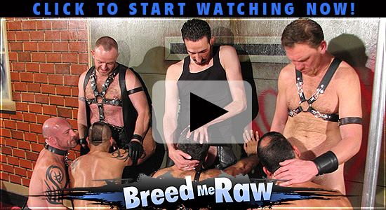 Breed Me Raw - Hardcore breeding sex and bareback fucking
